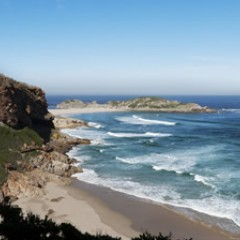Nature Walk on Robberg Peninsula